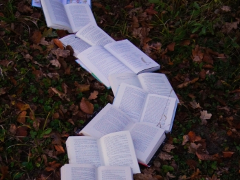 Open books making a path on the grass