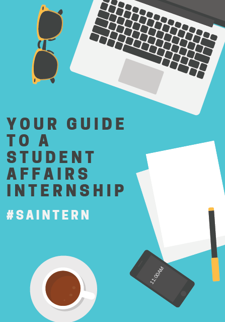 Picture of the #SAIntern Guide