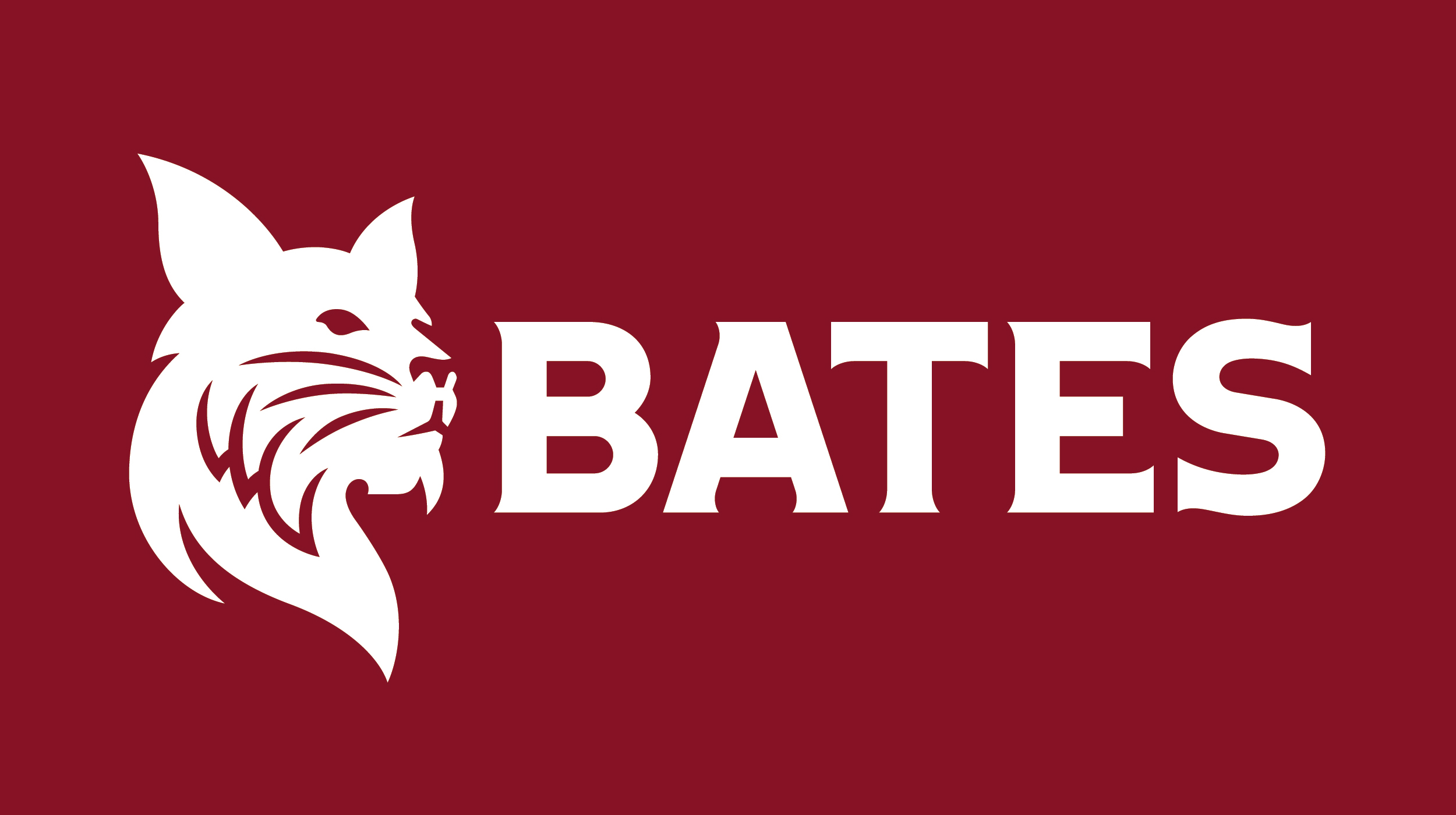 Bates College logo - NASPA LEAD participating institute